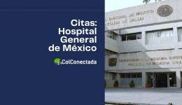 Solicitud de citas médicas en el Hospital General (HGM)