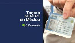 Requisitos y proceso para obtener la tarjeta SENTRI