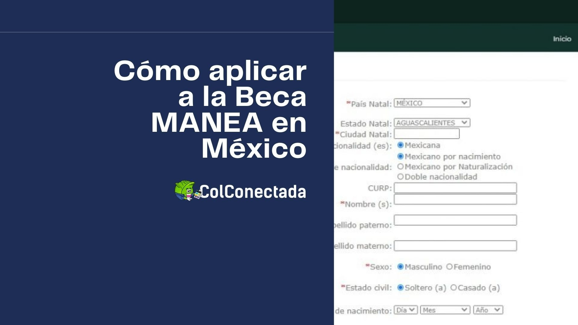 Requisitos para aplicar a la Beca de intercambio MANEA 5