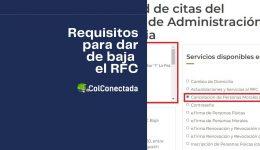 Cuál es el proceso para cancelar el RFC por cese de actividades