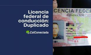 Requisitos para obtener el duplicado de la licencia federal