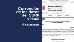 Cómo realizar la modificación de datos en la CURP