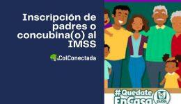 Registro de padres o concubinos como derechohabientes en el IMSS